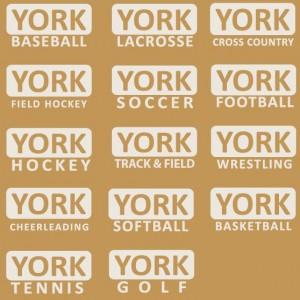 YHS stickers